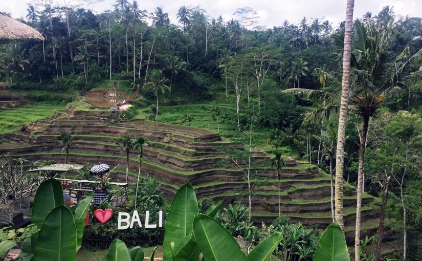 Tegalagang Rice Terraces – Ubud,Bali.